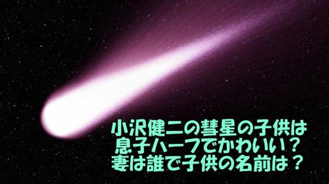 小沢健二 彗星 子供