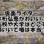 仮面ライダー 井桁弘恵
