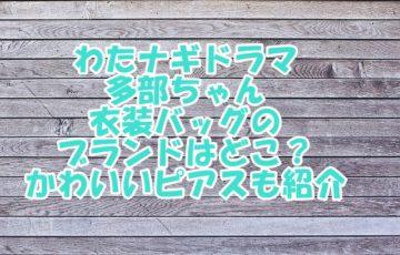 わたナギドラマ 多部ちゃん 衣装 バッグ ブランド