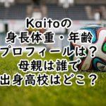 Kaito身長体重 年齢プロフィール