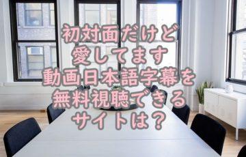 初対面だけど愛してます動画日本語字幕を無料視聴できるサイト
