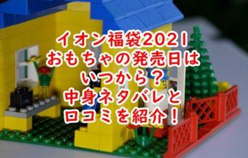 イオン福袋 2021 おもちゃ 発売日 いつから