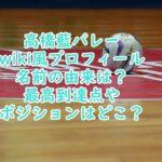 高橋藍バレーwiki風プロフィール